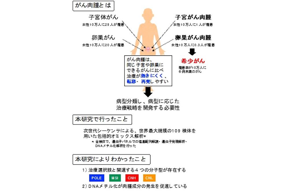 肉腫 子宮