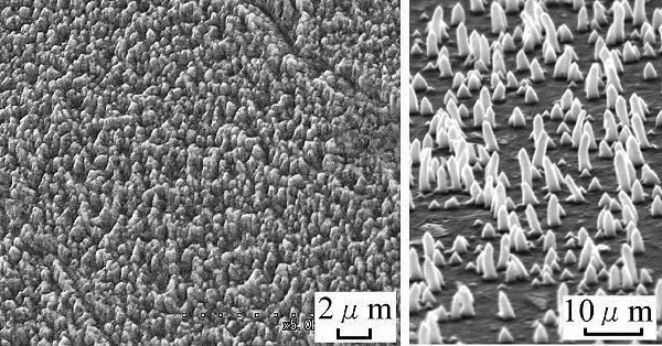 真空でも摩擦係数3分の1 福山大、高速工具鋼表面に炭化クロムナノワイヤ形成